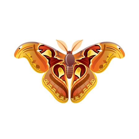 Butterfly icon. 3d realistic butterfly insect with beautiful orange yellow color wings. Animal sign for logo design, poster, t-shirt print, banner. Vector illustration isolated on white background Illusztráció