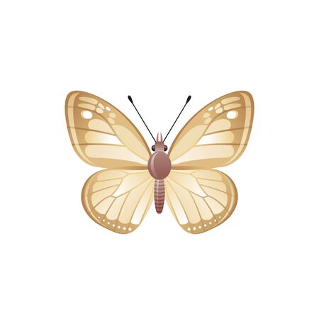 Butterfly icon. 3d realistic butterfly insect with beautiful brown beige color wings. Animal sign for logo design, poster, t-shirt print, banner. Vector illustration isolated on white background