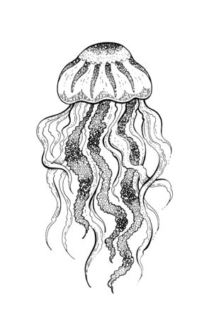 Jellyfish, underwater jelly fish icon. Coral reef animal sketch icon. Black engraved water element graphic, for coloring book, tattoo, print. Doodle hand drawn vector illustration isolated background Illusztráció