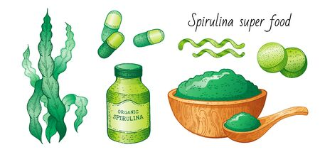 Spirulina seaweed set. Hand drawn sea plant, super food green drawing. Spirulina superfood detox collection. Sketch vector illustration, isolated white background. Powder bowl, spoon, pill bottle art