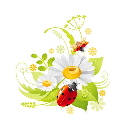Spring flower icon. Daisy chamomile floral symbol with leaf, grass, ladybug. Summer natural vector illustration for Mother day or birthday greeting card, wedding invitation, cartoon poster decoration