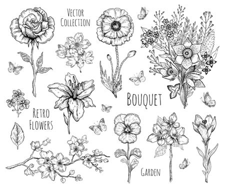 Flower set. Rose, poppy, lily, cherry blossom. Vector floral graphic, sketch plant illustration. Black and white vintage line art. Spring or summer hand drawn flowers. Botanical engraved collection