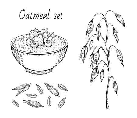 Oats sketch. Oatmeal porridge bowl with milk, fruit, oat ear, grain. Engraved icon art. Line muesli, flake for healthy sweet breakfast food design. Vector illustration set isolated on white background 向量圖像