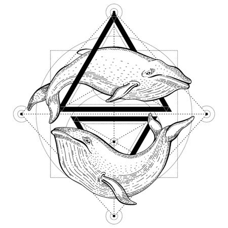 Blue whale tattoo. Geometric vector illustration with triangles and sea animals. Sketch  in hipster vintage style. Hand drawn whales art, black line engraved poster isolated on white background