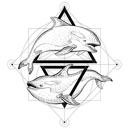 Killer whale orca tattoo. Geometric vector illustration with triangles and sea animals. Sketch  in hipster vintage style. Hand drawn art, black line engraved poster isolated on white background