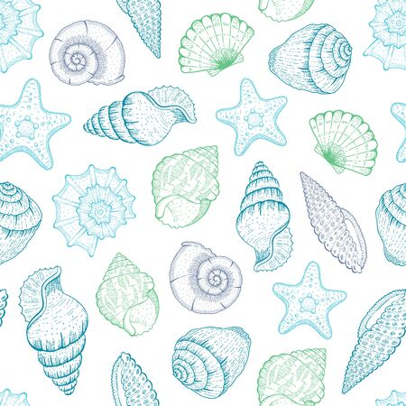 Sea Shell Pattern. Seashell seamless vector background. Ocean beach illustration with sketch starfish, shells, tropic seashells. Summer marine vintage print. Hand drawn underwater life blue graphic