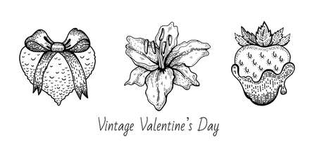 Valentine sketch set. Vintage doodle vector icons. Happy Valentine s day illustration. Hand drawn romantic symbols. Cute line graphics with heart, lily flower, chocolate strawberry. 向量圖像