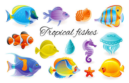 Tropical Fish set. Vector aquarium or sea icons. Coral Reef underwater animals. Isolated ocean life collection. Marine illustration in cartoon style. Exotic blue angelfish, butterfly, surgeon fishes