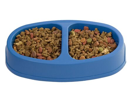 The isolated bowl with a dry feed for cats photo