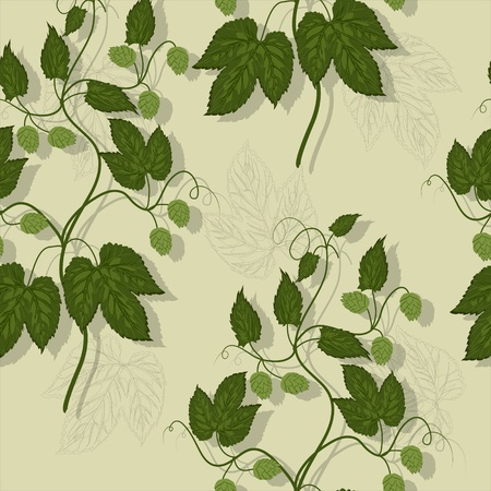 hop plant: Floral seamless pattern with leaves and fruit of hops  Illustration