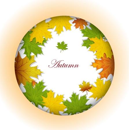 autumn maple leaves Stock Vector - 15351102