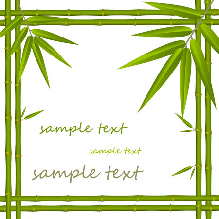 lucky bamboo: Bamboo frame Illustration