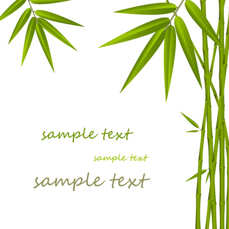 tropical border: Bamboo frame Illustration