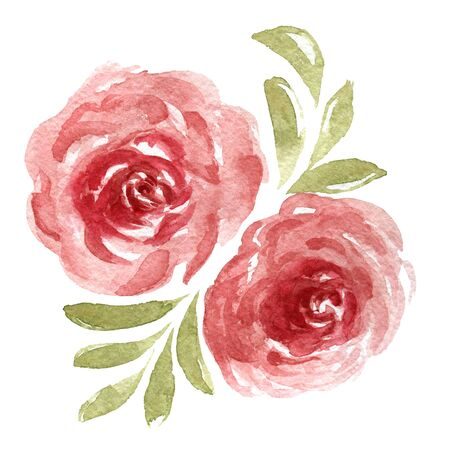 Watercolor romantic composition of roses isolated on white background.