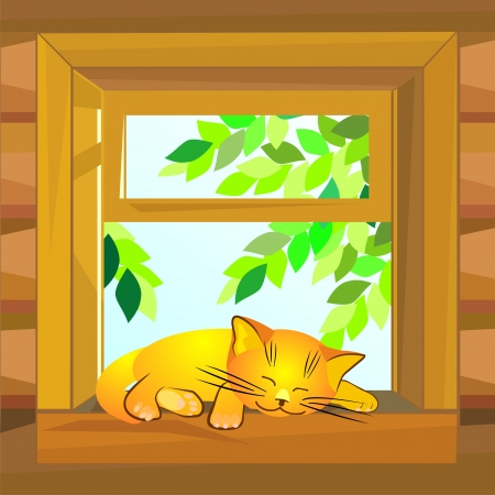 windowsill: red cat on a summer day asleep on a windowsill at the open window wooden farmhouse