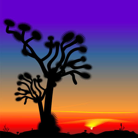bright beautiful desert landscape with the setting sun and the silhouette of a lone tree Vector