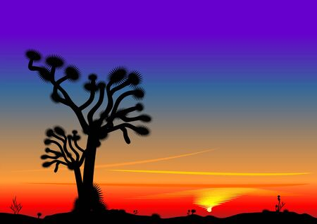 setting sun: bright beautiful desert landscape with the setting sun and the silhouette of a lone tree