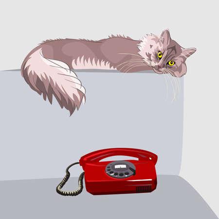 red couch: Lilla birichino gatto Soriano con occhi gialli, sdraiato sul divano di fronte a un telefono rosso