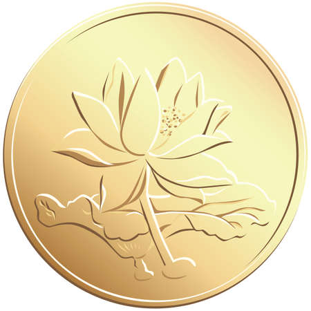 renminbi: vector chinese coin with a picture of a flower