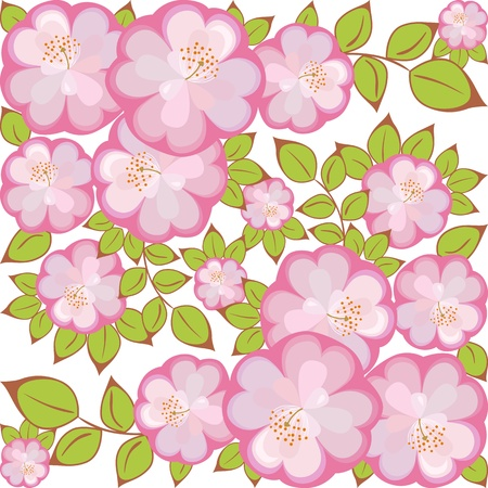 enclosed: pattern of pink-purple flowers enclosed in a square Illustration