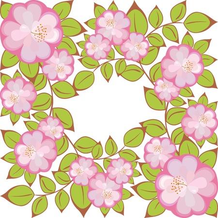 patrón de flores púrpura de la Rosa encerrada en un cuadrado