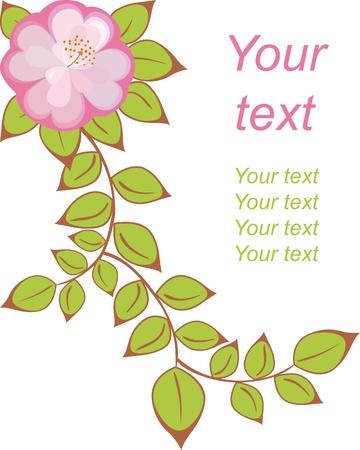 fruit stem: postcard with pattern of pink-purple flowers