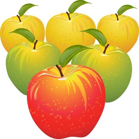 Satz von rot, gelb, grün, reif und saftig Äpfel isoliert auf weißem Hintergrund