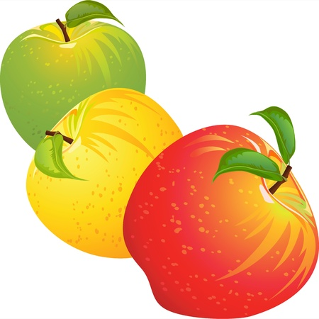 manzana: conjunto de rojos, amarillos, verdes, maduros, jugosas manzanas aisladas sobre fondo blanco