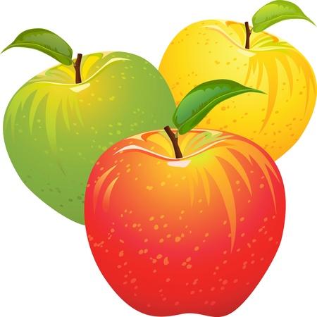 pommes: ensemble de pommes rouges, jaunes, verts, ripe, juteuses, isol� sur un fond blanc Illustration