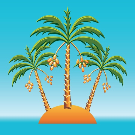 date palm: tropical landscape of the island in the ocean and three date palm trees  Illustration