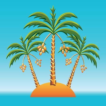 dattelpalme: tropische Landschaft der Insel im Ozean und drei Dattelpalmen