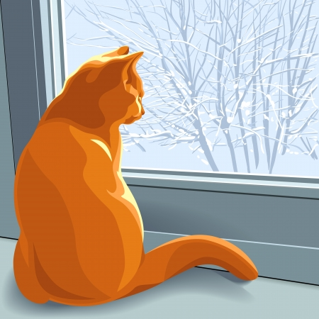 new year cat: red british cat sits on the windowsill in the winter and looking out the window at the snow-covered trees
