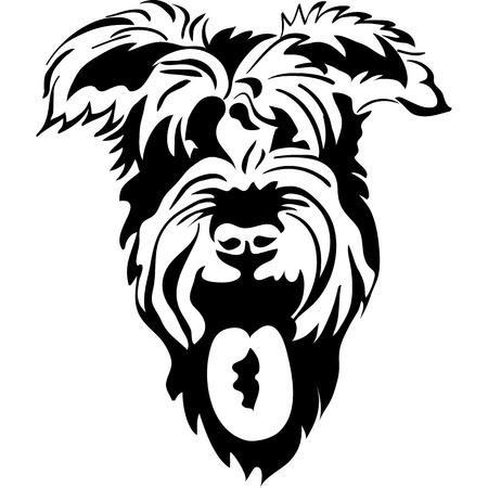 순 혈종의: 벡터 검은 색과 흰색 배경에 고립 된 슈나우저 근접 촬영, 화이트 스케치