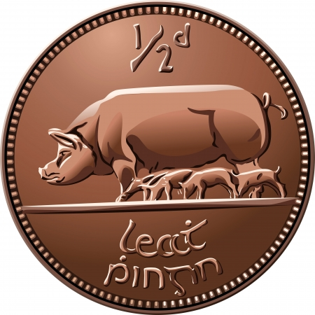 sow: Irish money cooper coin half penny with sow and piglets, isolated on white background