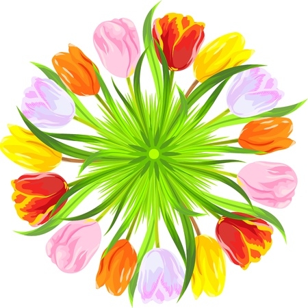 imagery: circle of red, yellow, pink, orange, white tulips in a light green grass isolated on white background Illustration