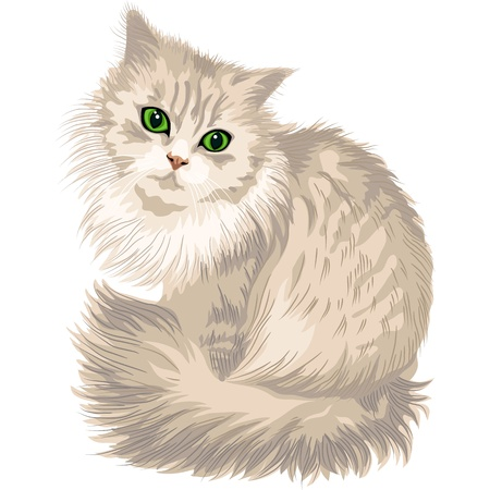 funny cats: cute lilac cat with green eyes, isolated on the white background