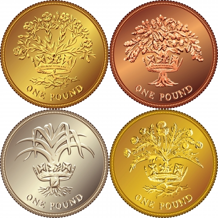 pound coin: set British money gold coin one pound sterling with the emblems: Thistle and royal diadem representing Scotland, Leek and royal diadem representing Wales, Flax Plant and royal diadem, Oak Tree and royal diadem representing Northern Ireland