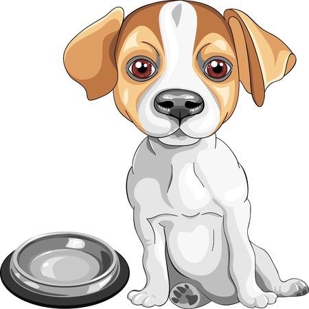 boceto a color del perro de raza Jack Russell Terrier se sienta delante de una taza vacía, pide de comer