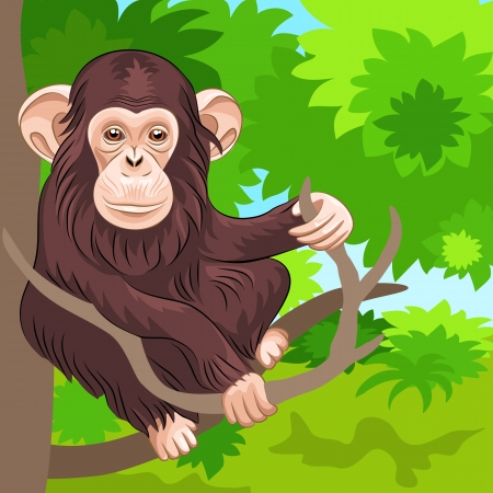 brown chimpanzee sitting on the branches of a tree in the jungle Vector