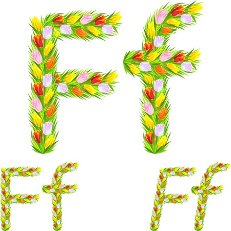 italic: font type letter F made from flower tulip with a different typeface: italic, bold, regular