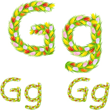 font type letter G made from flower tulip with a different typeface: italic, bold, regular Vector