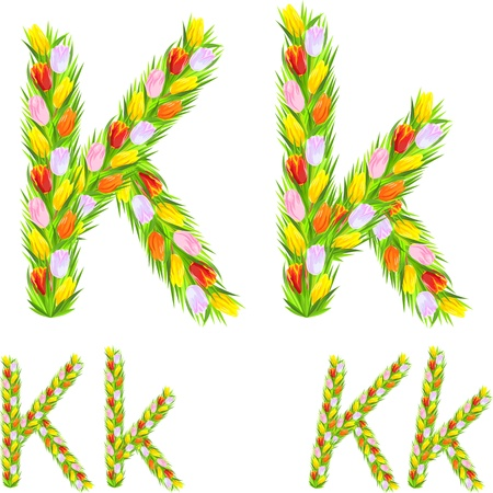 different types: font type letter K made from flower tulip with a different typeface: italic, bold, regular Illustration