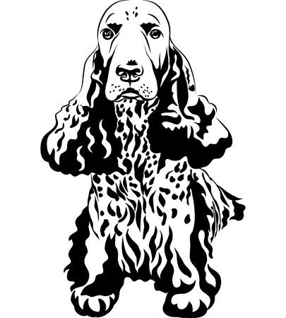 銃犬の黒と白のスケッチ クローズ アップ肖像画座っている英国のコッカー Spaniel の繁殖します。  イラスト・ベクター素材