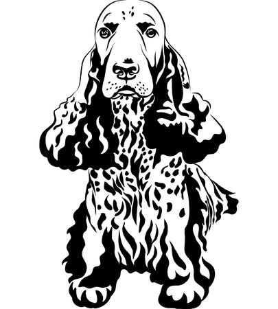 black and white sketch close-up portrait of a gun dog breed English Cocker Spaniel sitting Stock Vector - 15440901