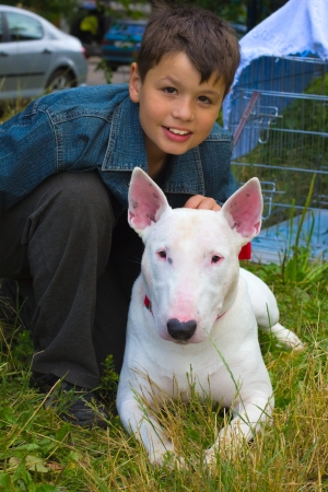 white Bull Terrier Dog and boy on the green grass in the summer lawn Stock Photo - 15785365