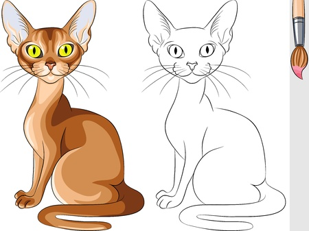 abyssinian cat: Vector Coloring Book for Children of funny serious red cat Abyssinian Illustration