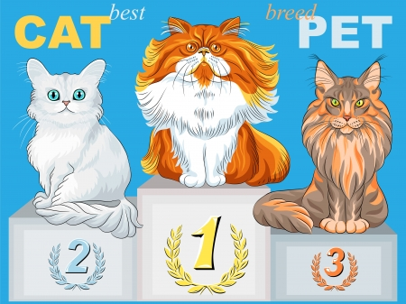 fluffy cat champion of different breeds on the podium Stock Vector - 17966679