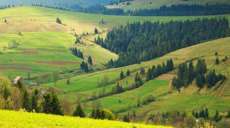 carpathian mountains: Spring morning rural landscape in the Carpathian mountains  The sun Stock Photo