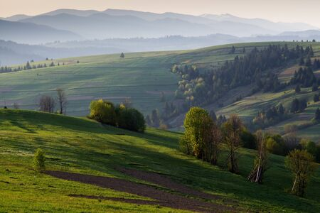 carpathian mountains: Spring morning rural landscape in the Carpathian mountains. The suns rays illuminate the colorful hills