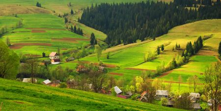 Spring morning rural landscape in the Carpathian mountains.  Stock Photo